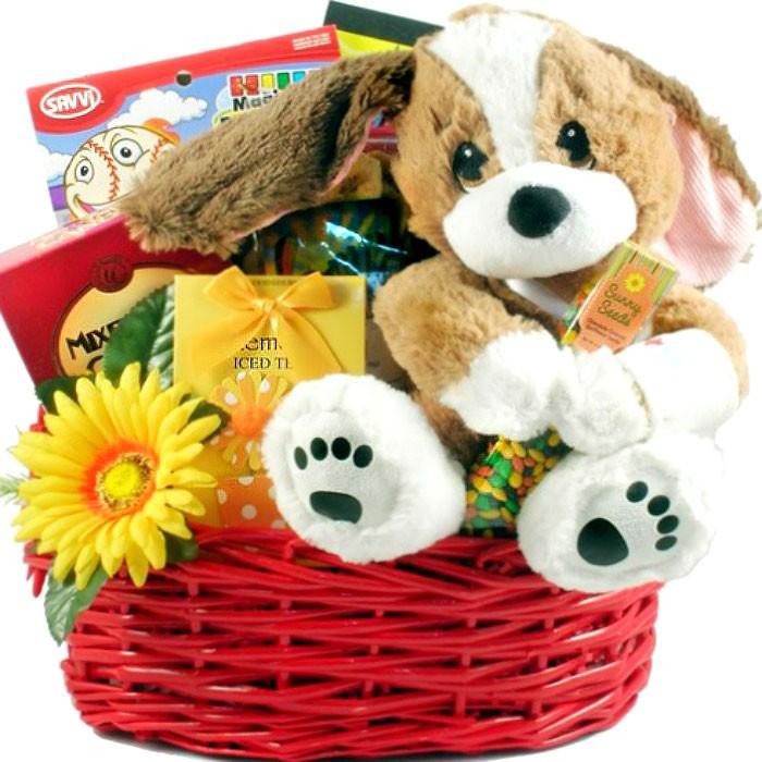 Tlc get well basket for kids