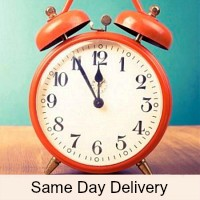 Same Day Basket Gift Delivery