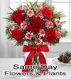 same day florist delivery