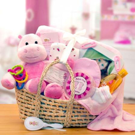 Precious Baby Girl Moses Baby Girl Gift Basket