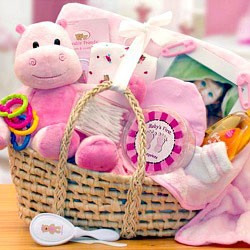 Precious Baby Girl Baby Carrier Gift Basket