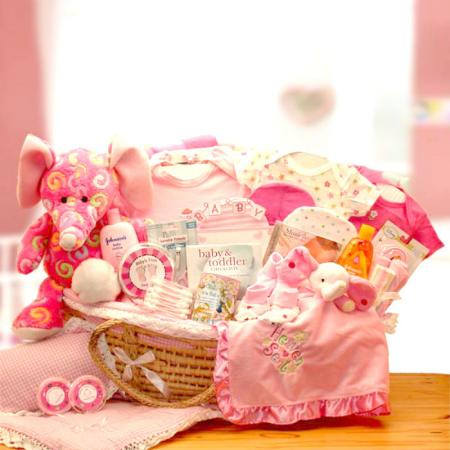 Baby Girl Precious Petals Moses Carrier Gift Basket