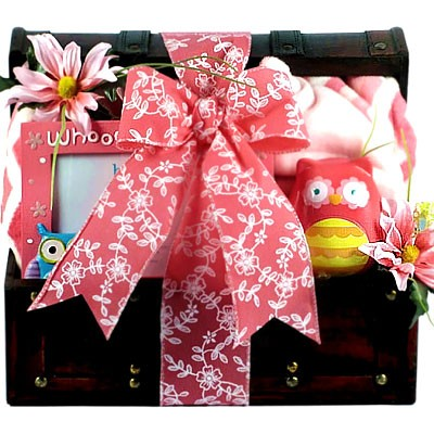 Cutie Pie baby girl gift basket