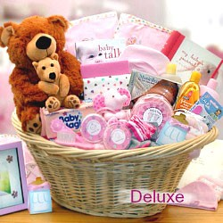 New Baby Girl Gift Basket Collection