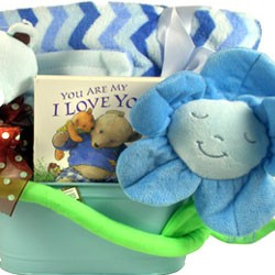Snuggle Me, New Baby Basket