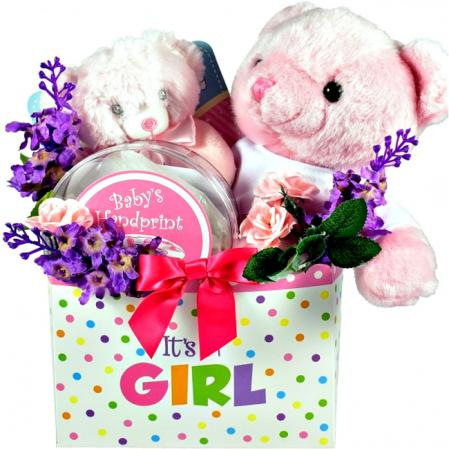 it is a new baby girl gift basket