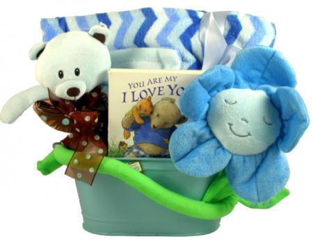 Snuggle New Baby Gift Basket