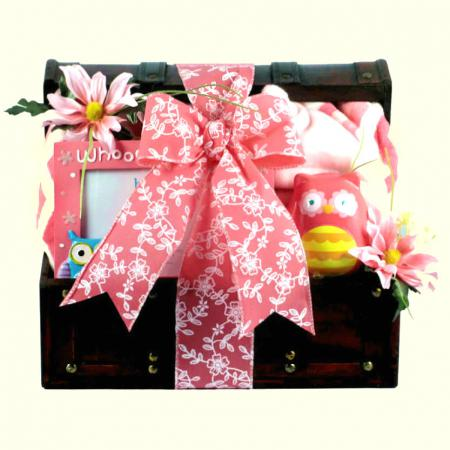 Cute Baby Girl Gift Basket