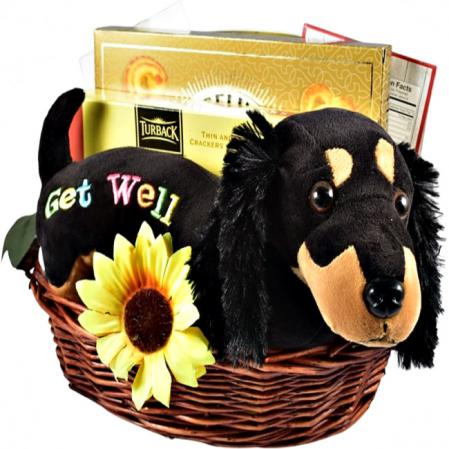 get well gift basket with plush dog