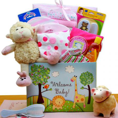 new-baby-welcome-gift