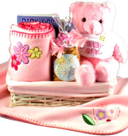 baby girl gift basket welcome to the world