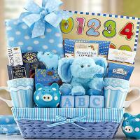Baby-Boy-Gift-Basket-Gift.jpg