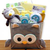 little hoot baby gift basket