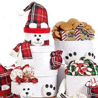 Polar Bear Gift Boxes
