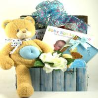 Bear Necessities, Baby Gift Basket