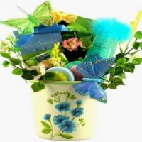 Showpiece Butterfly Spa Gift