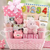 new-baby-girl-gift-basket-g.jpg