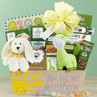 sunshine new baby gift basket